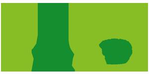 weltweiser · Logo · CAS · Handbuch Fernweh · Schüleraustausch